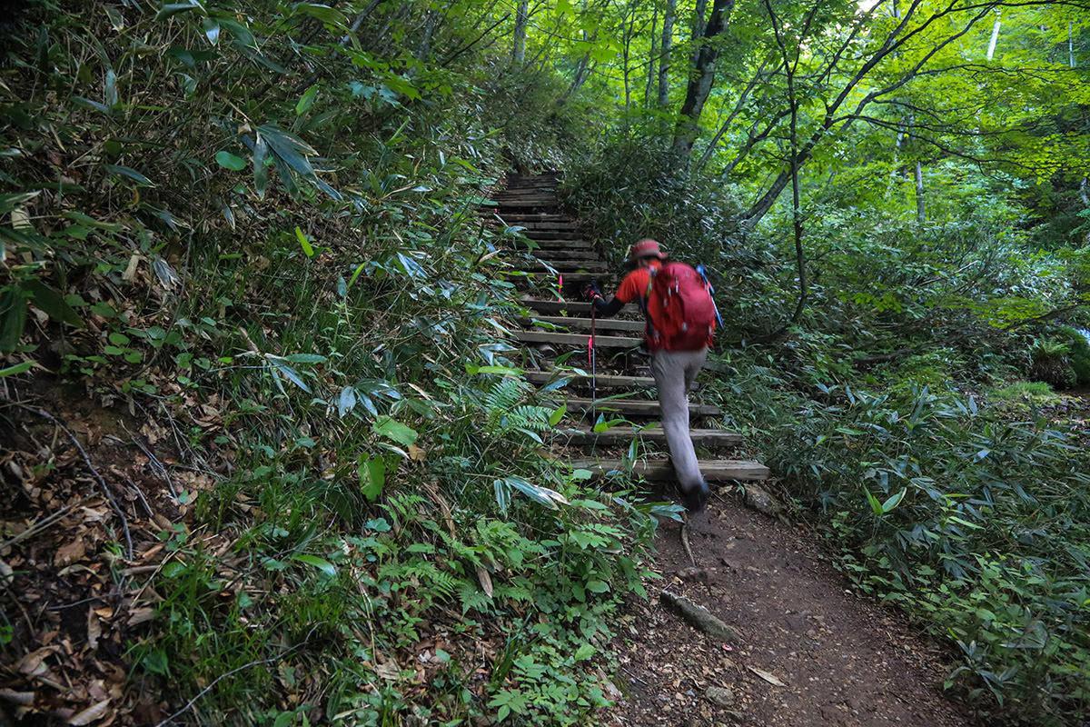 【燧ヶ岳】登山百景-登山道は整備されている
