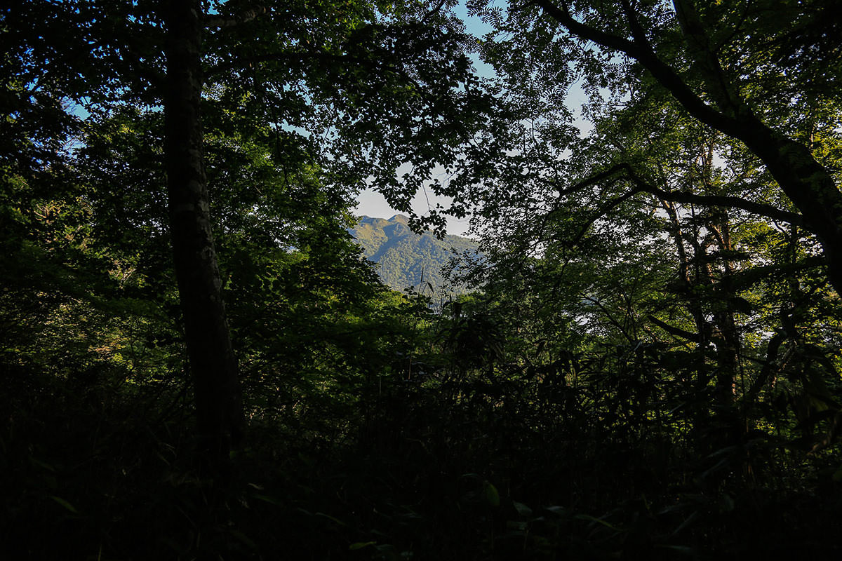 燧ヶ岳が見えた