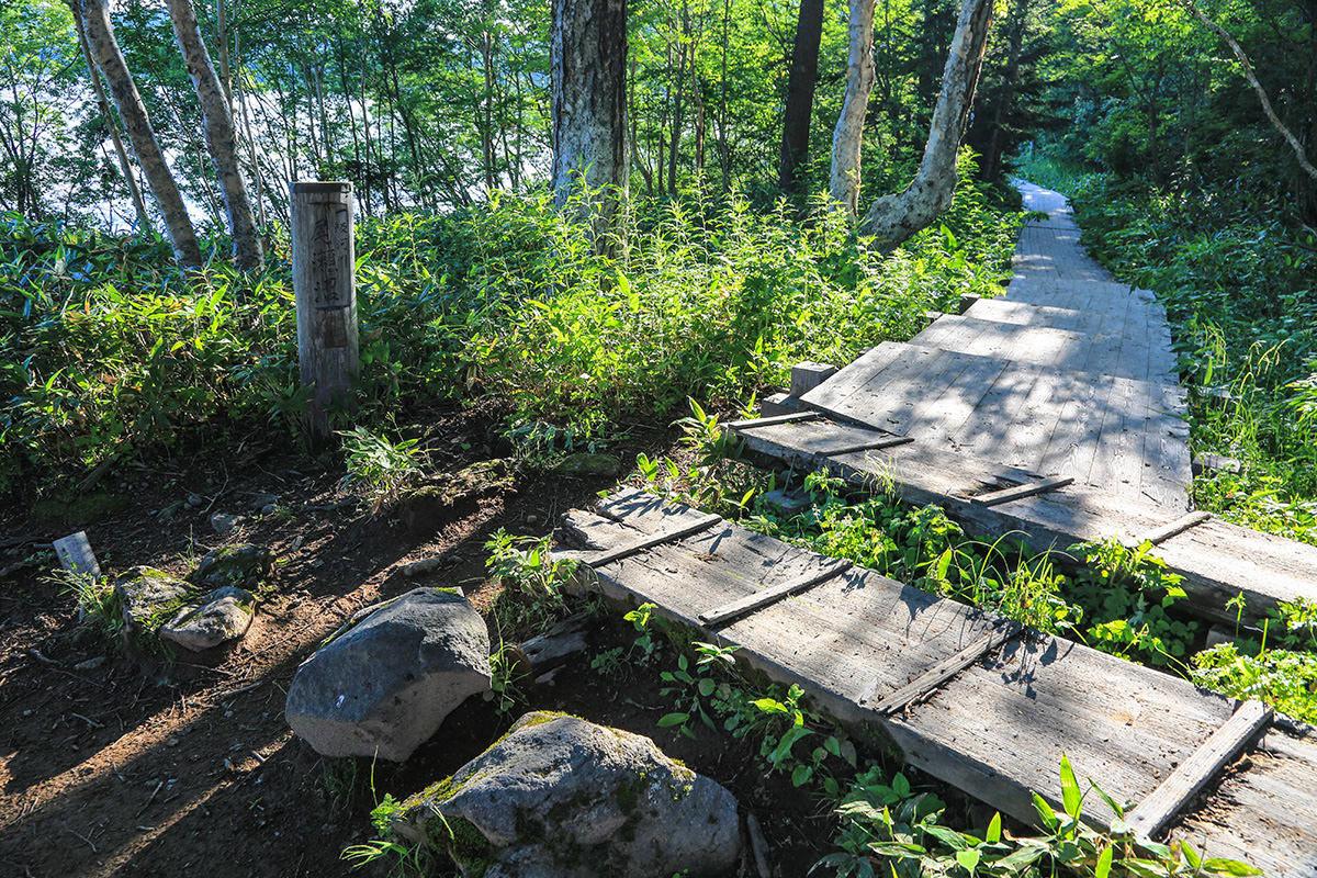 【燧ヶ岳】登山百景-尾瀬沼山荘から右へ