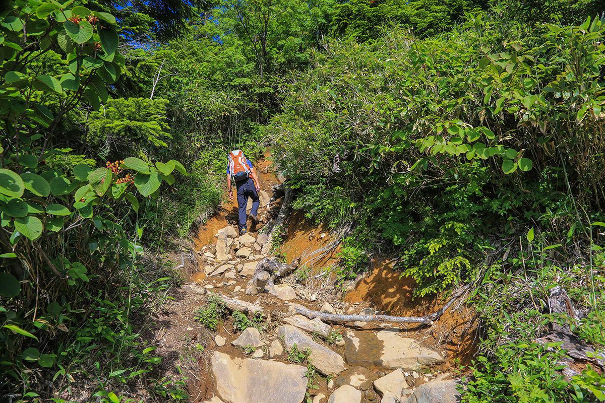 【燧ヶ岳】登山百景-急な坂