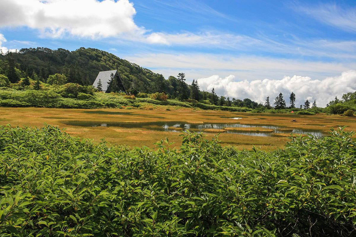 【火打山】登山百景-湿地越しに高谷池ヒュッテ