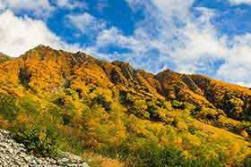 東側の山は紅葉がキレイ