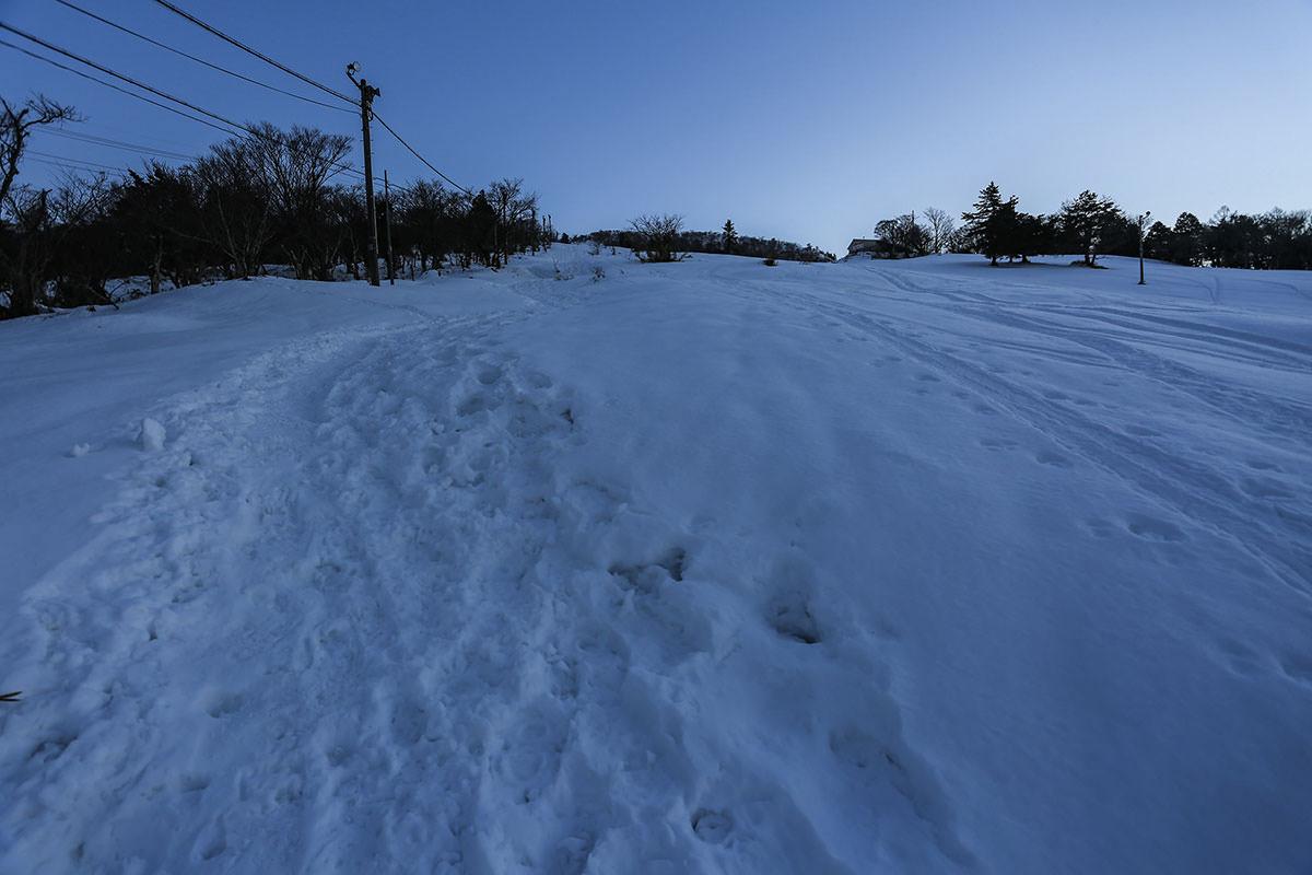 【伊吹山】登山百景-ゲレンデの横を歩く