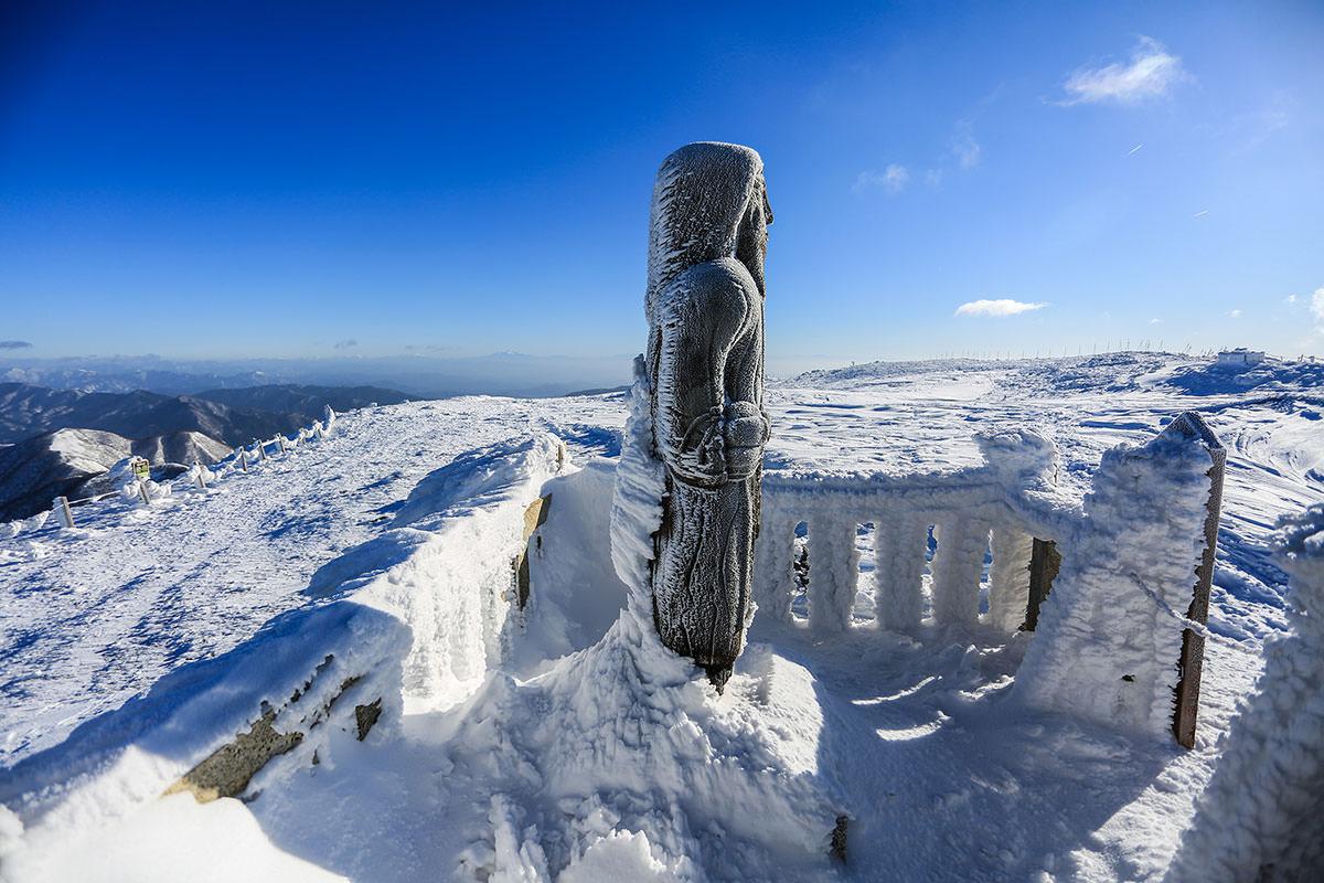【伊吹山】登山百景-雪が背ビレのように