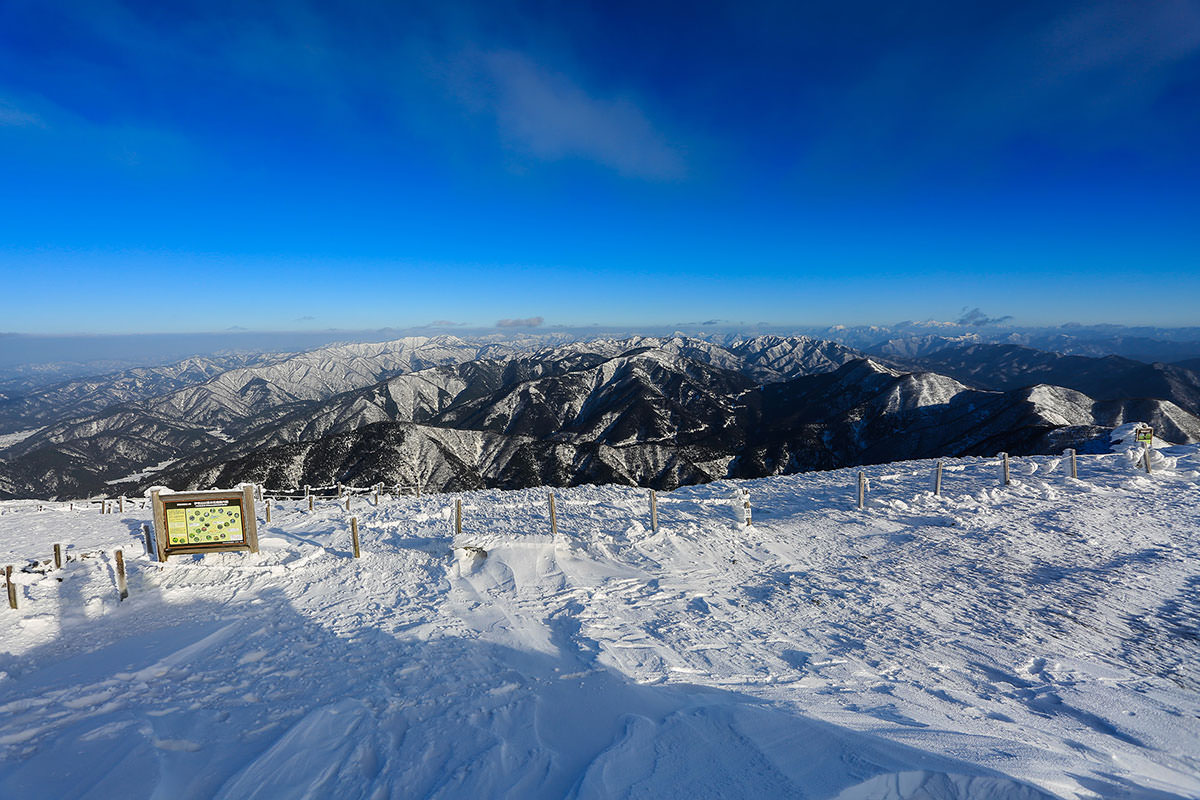 【伊吹山】登山百景-山頂部は広い