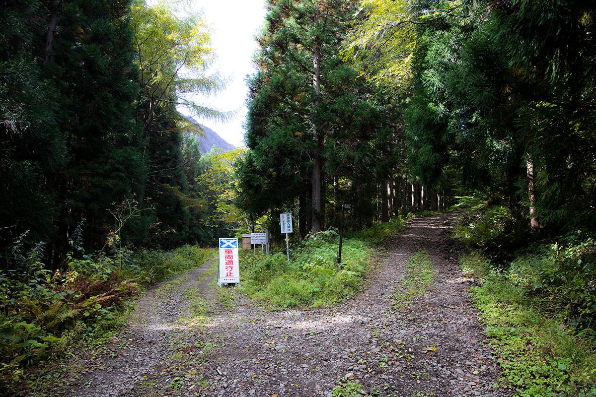 右が最寄りの登山口