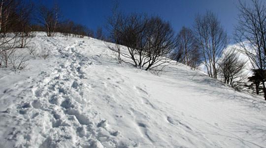 飯縄山 一の鳥居