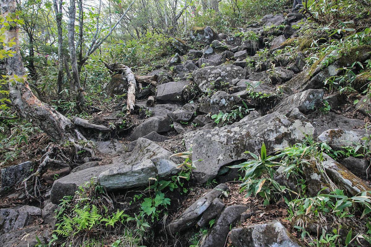 【飯縄山】登山百景-石の坂道