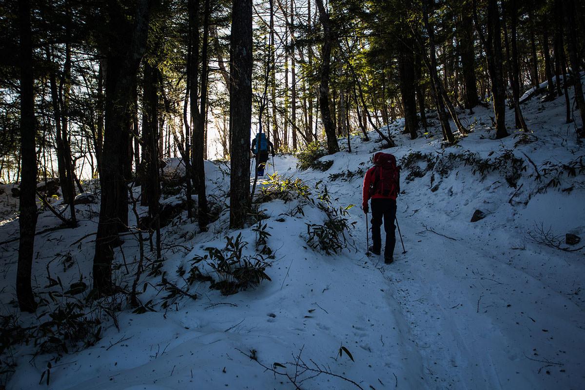 【硫黄岳 本沢温泉】登山百景-樹林帯を登る