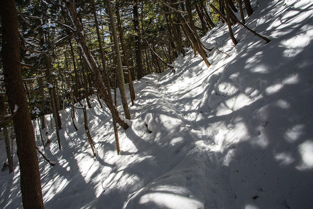 【硫黄岳 本沢温泉】登山百景-樹林帯を九十九折りに