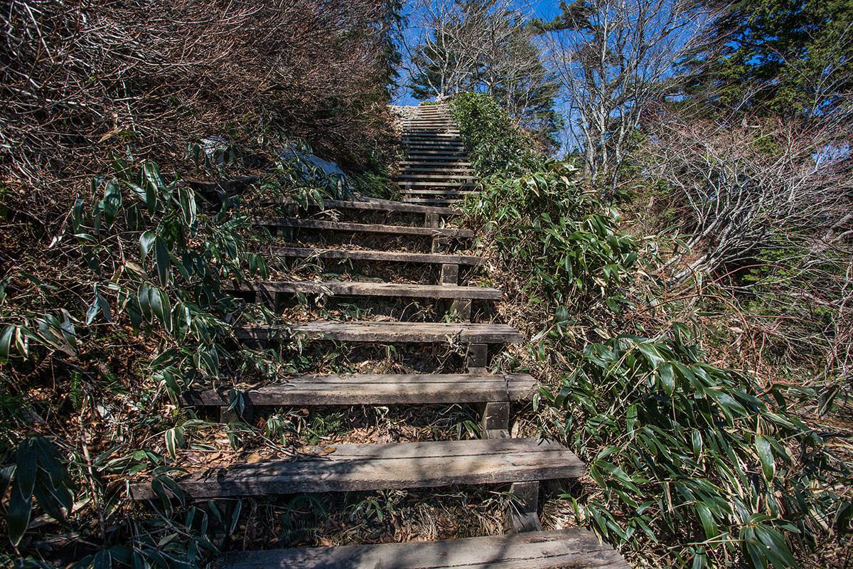 階段はまだまだ続く