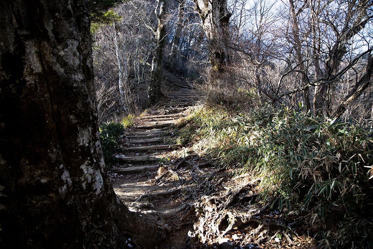 登り返しの階段