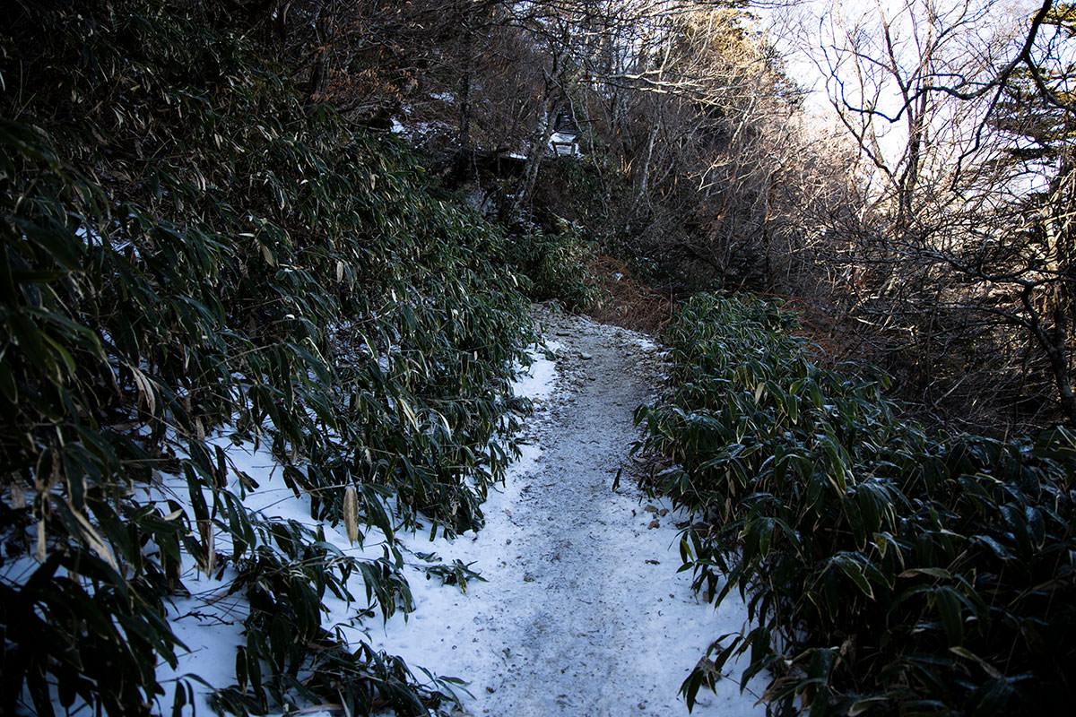 雪が増えてきた
