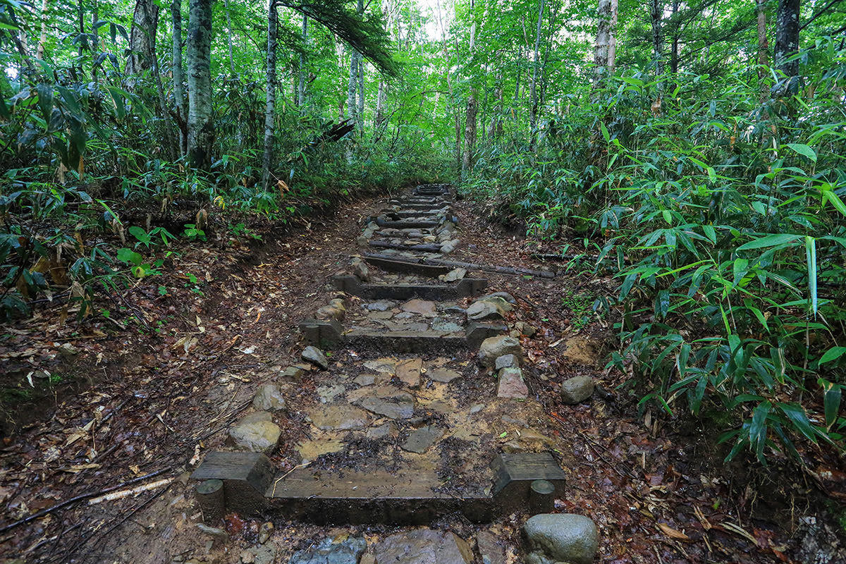 【岩菅山 聖平の上】登山百景-木段が整備されている