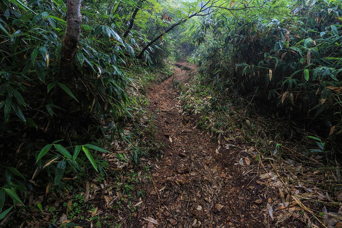 【岩菅山 聖平の上】登山百景-木段終わった