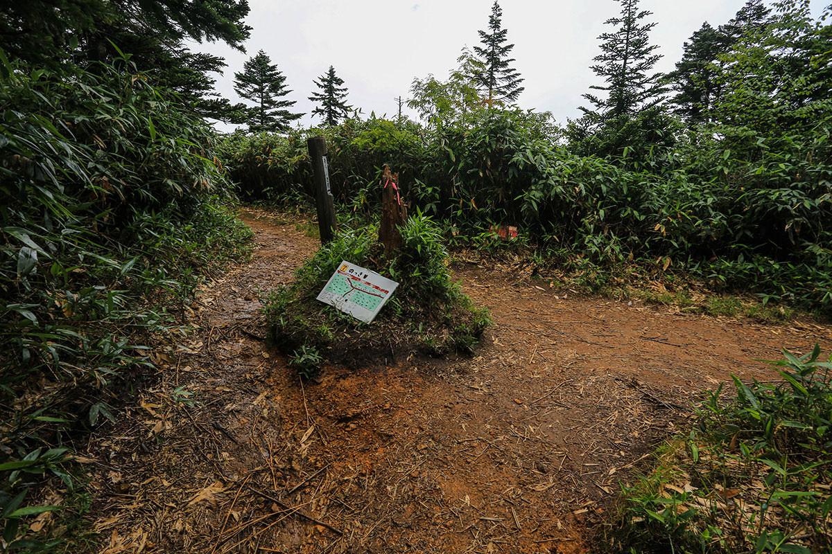 【岩菅山 聖平の上】登山百景-ノッキリに出た