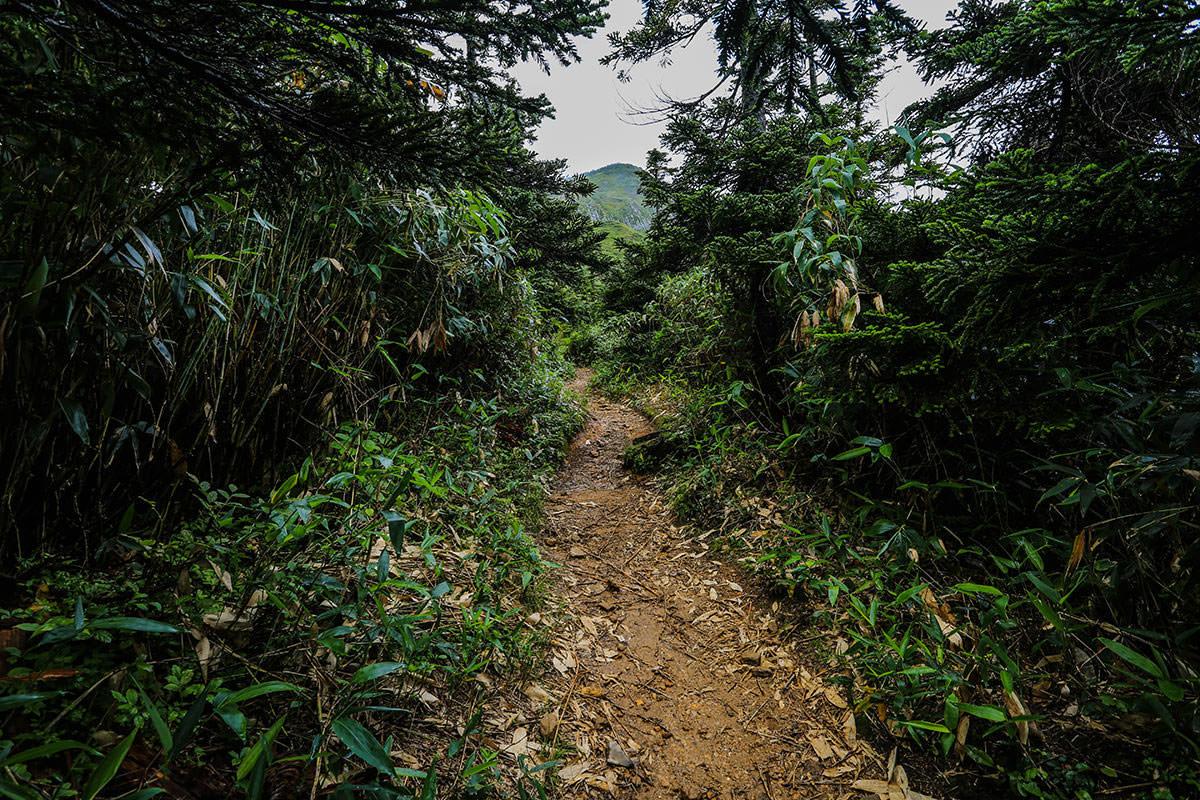【岩菅山 聖平の上】登山百景-岩菅山が見えた