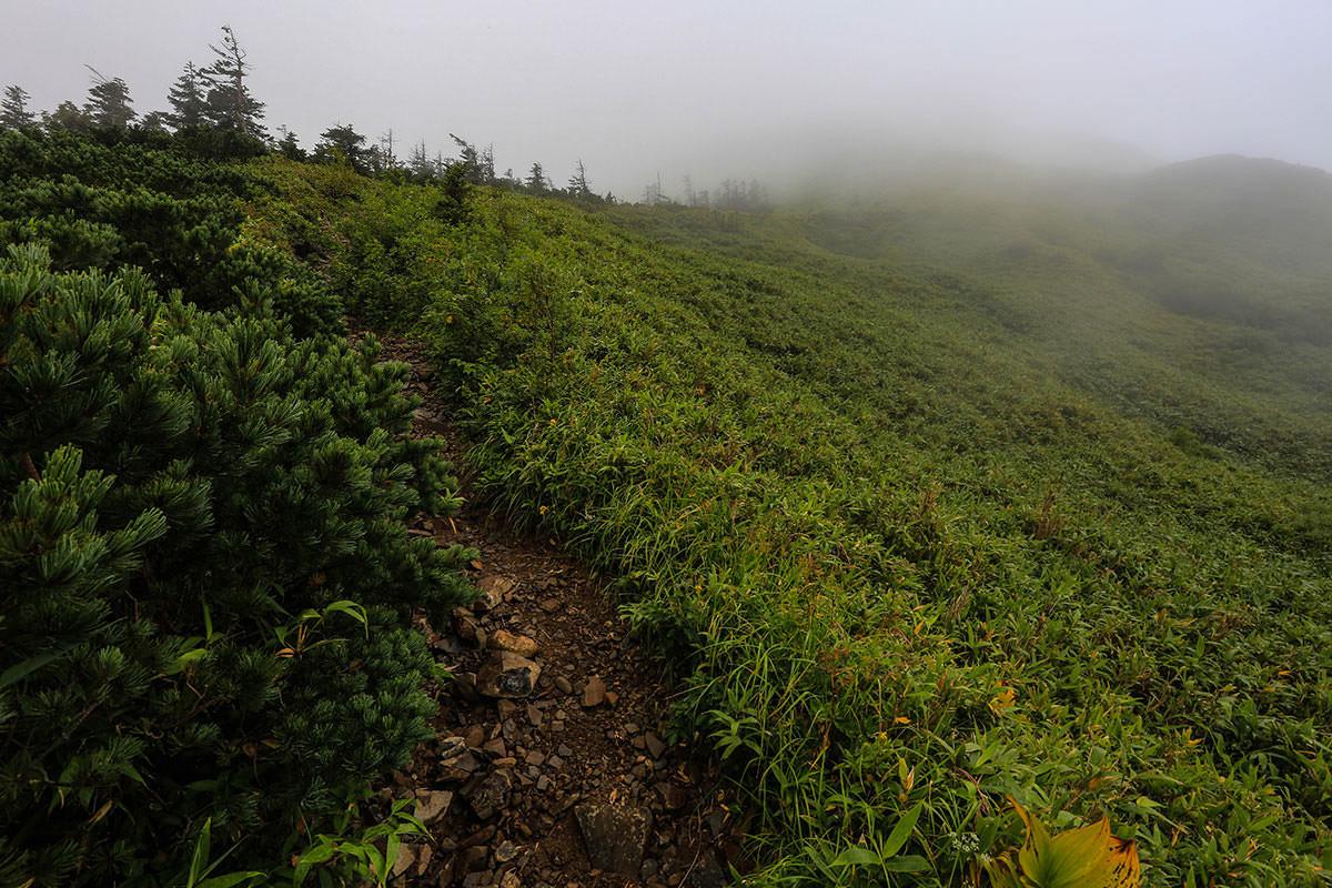 【岩菅山 聖平の上】登山百景-勾配がきつい