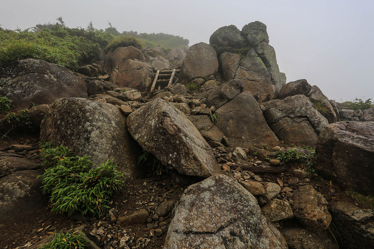 【岩菅山 聖平の上】登山百景-ハシゴ
