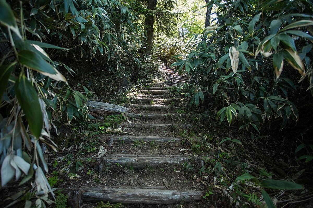 【岩菅山 裏岩菅山縦走】登山百景-階段が続く