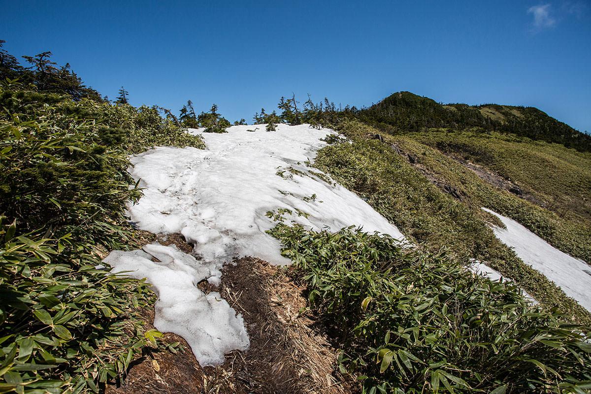 【岩菅山 裏岩菅山縦走】登山百景-雪も少し残っている