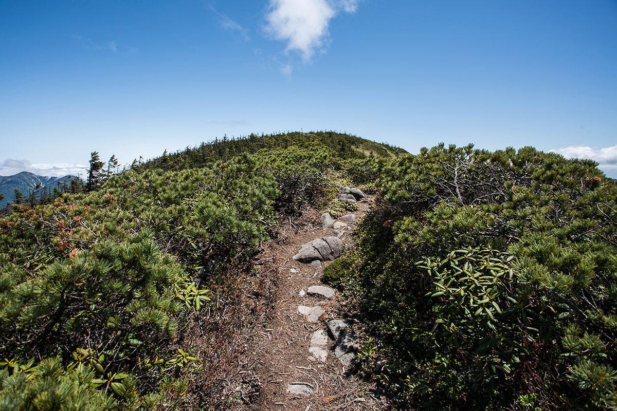 【岩菅山 裏岩菅山縦走】登山百景-ピークに登る