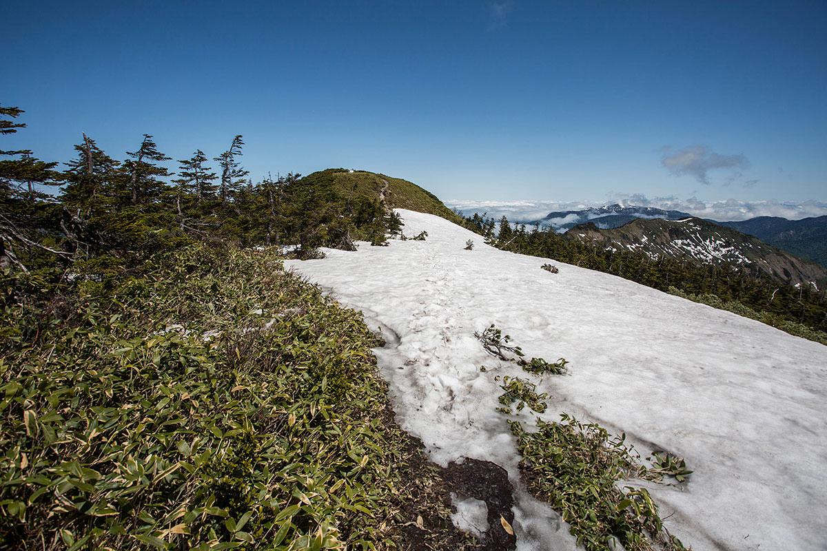 【岩菅山 裏岩菅山縦走】登山百景-残雪の先に山頂
