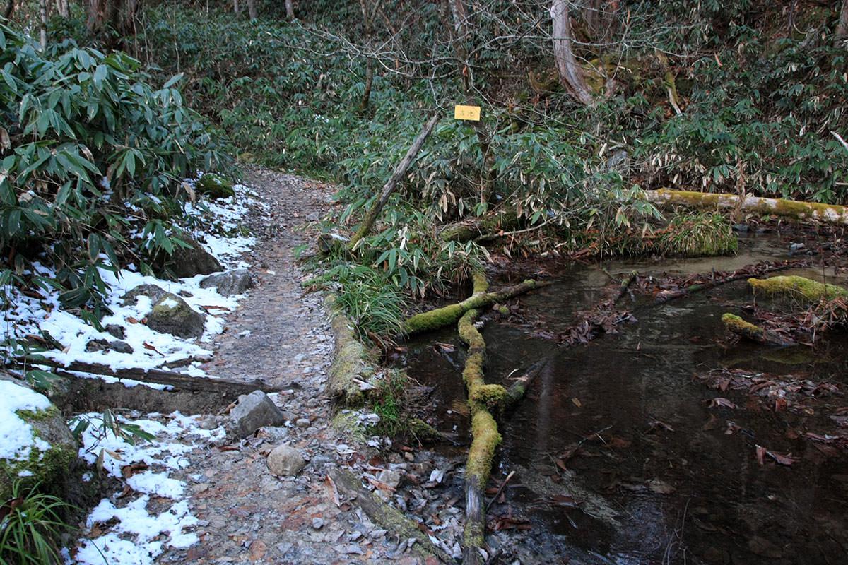 大池あたりで雪
