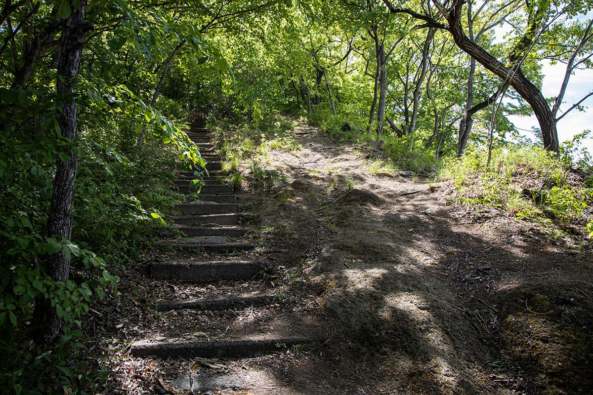 歩きやすそうな斜面と階段が真っ直ぐに続く