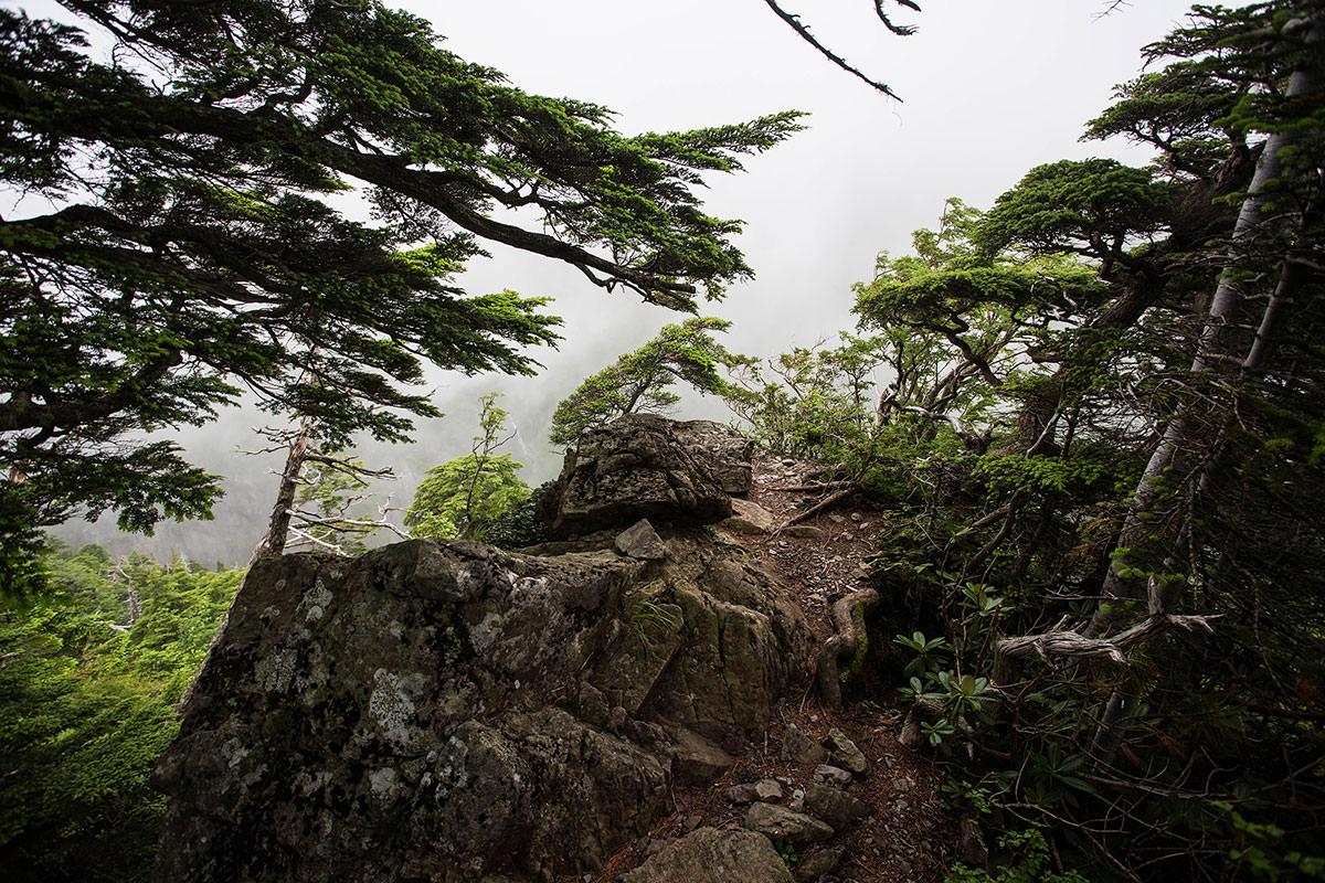 岩の下に滝が見える