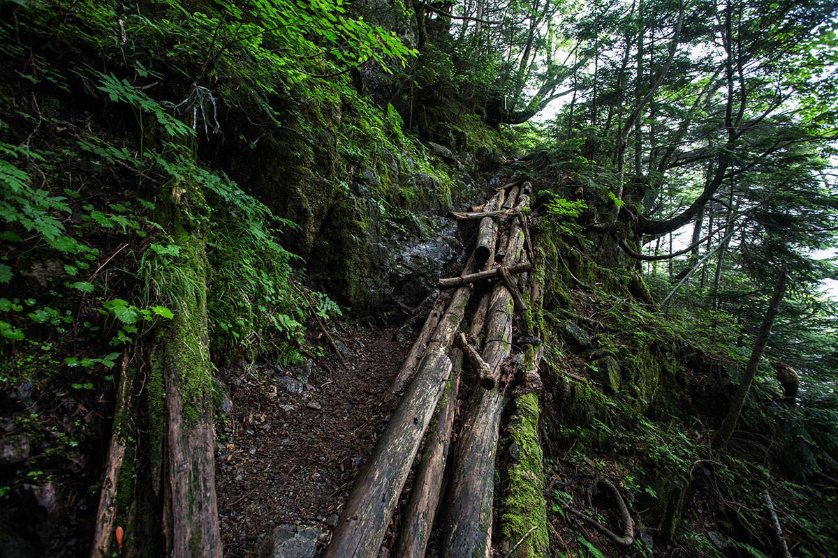 濡れた木は滑る