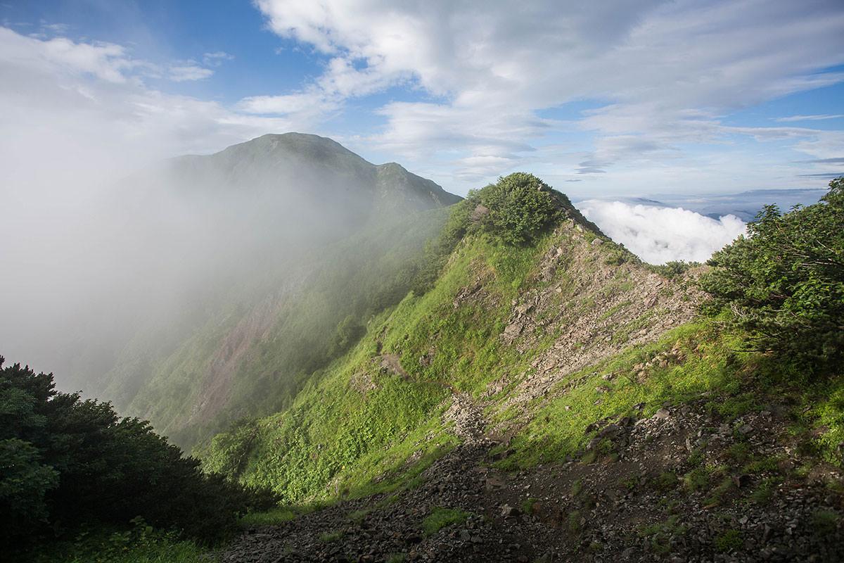 上河内岳への登山道