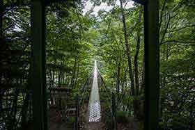 長い吊り橋を渡る