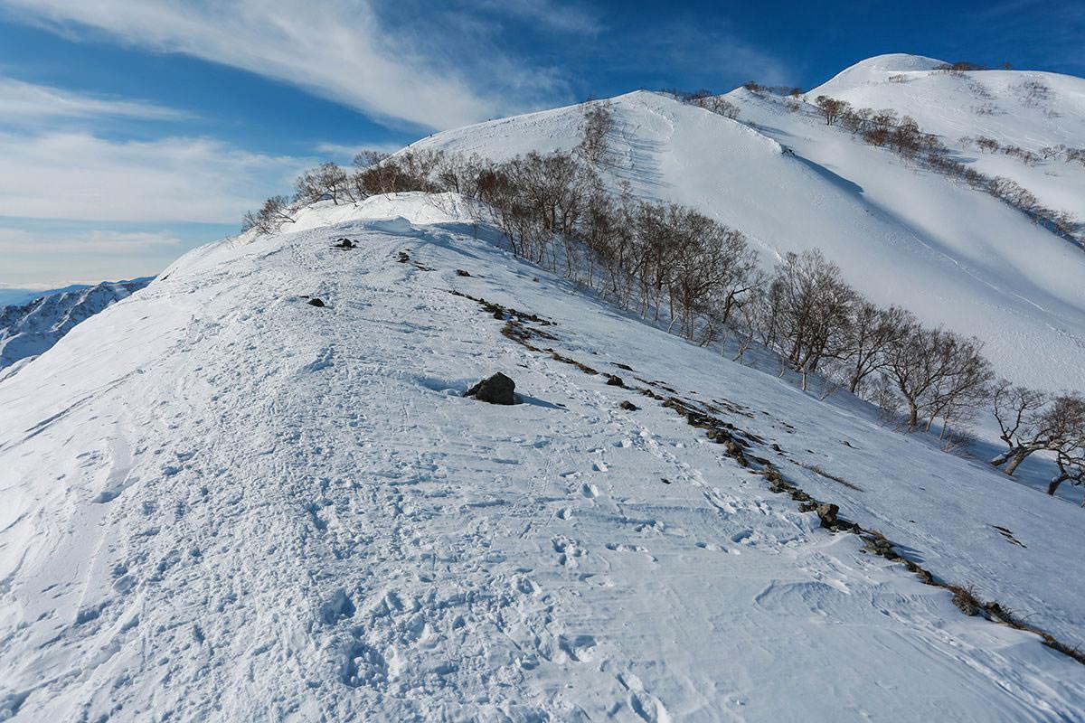 唐松岳-木の間を歩く