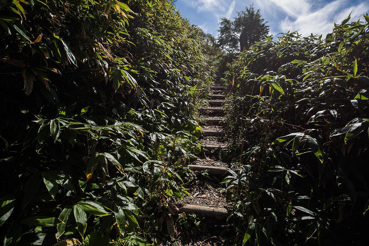 階段だらけ