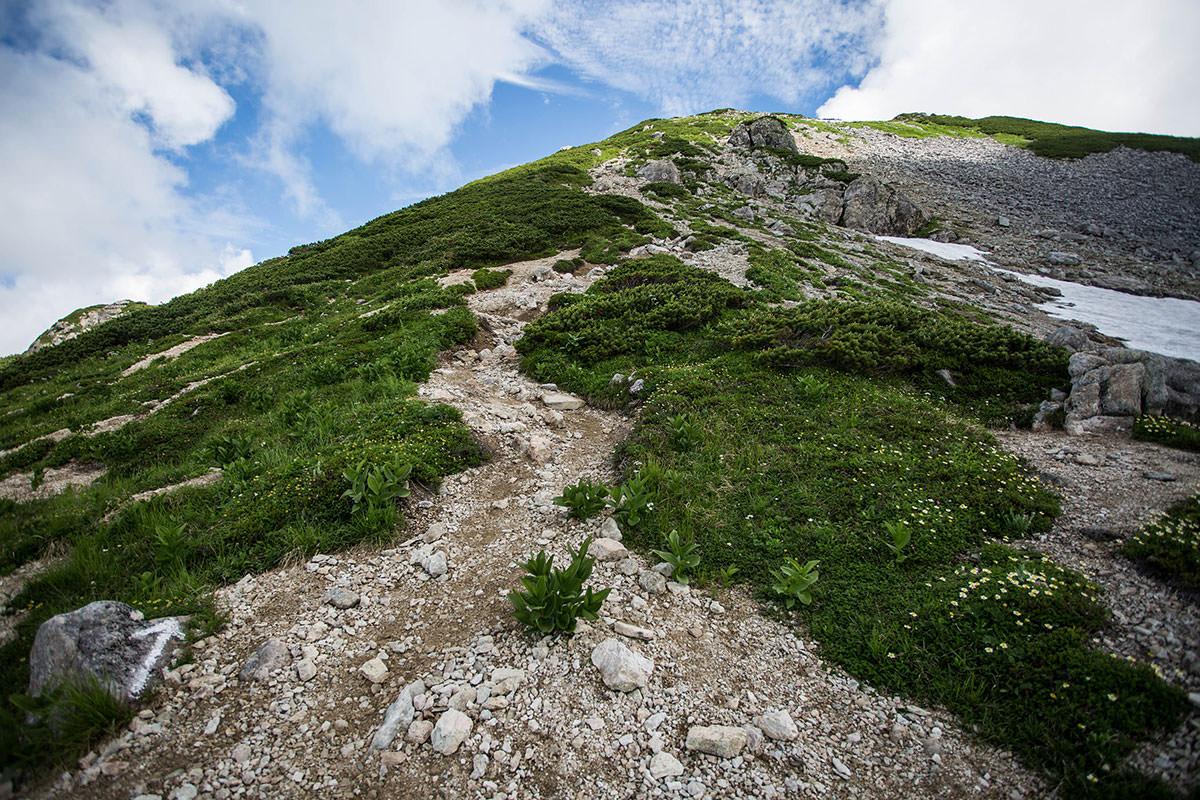 抜戸岳まで高い