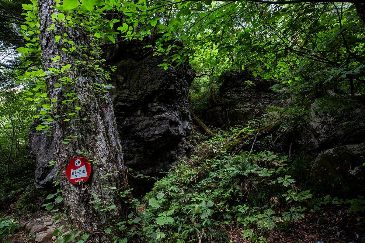 沢を渡ったら大きな岩