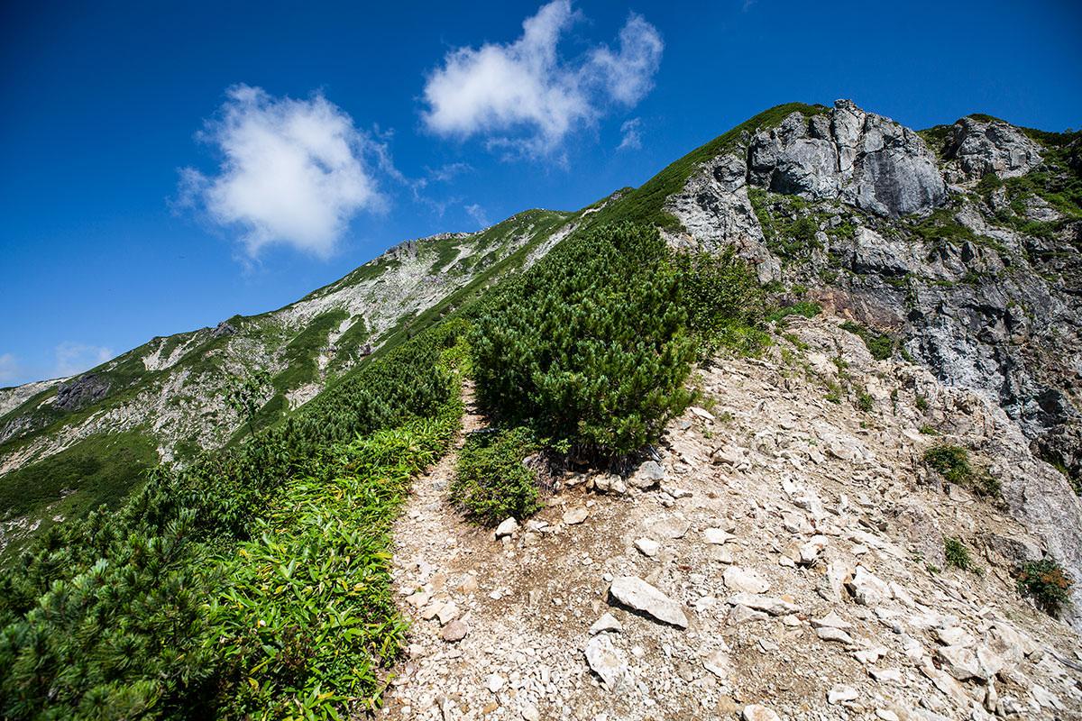 左は坂で右は崖