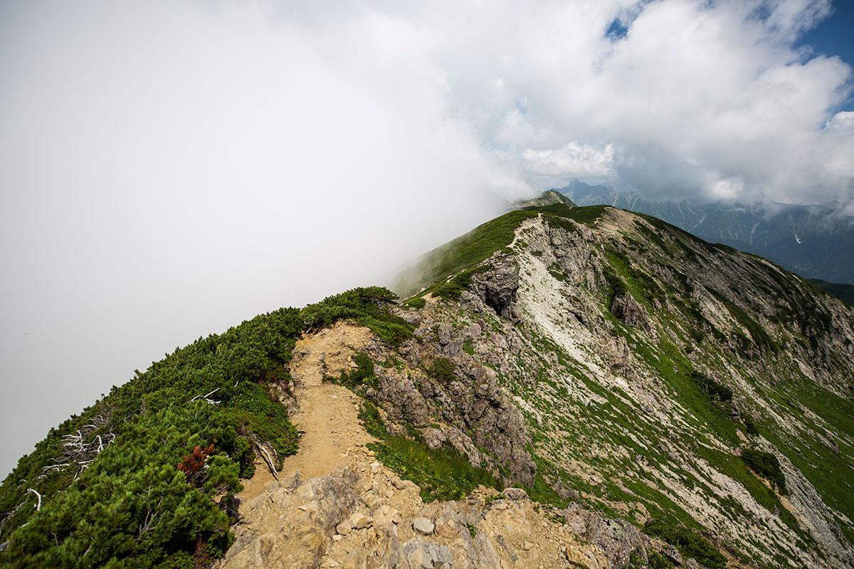 稜線を抜戸岳へ向かう