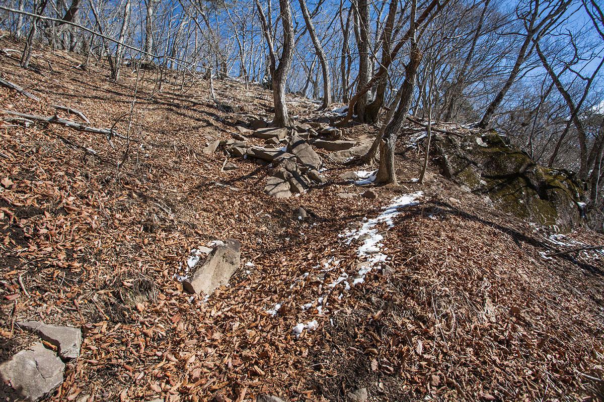 【茅ヶ岳 女岩ルート】登山百景-尾根までもう少し