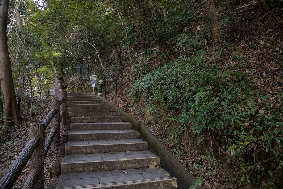 金華山-ゆるゆると登りはじめ