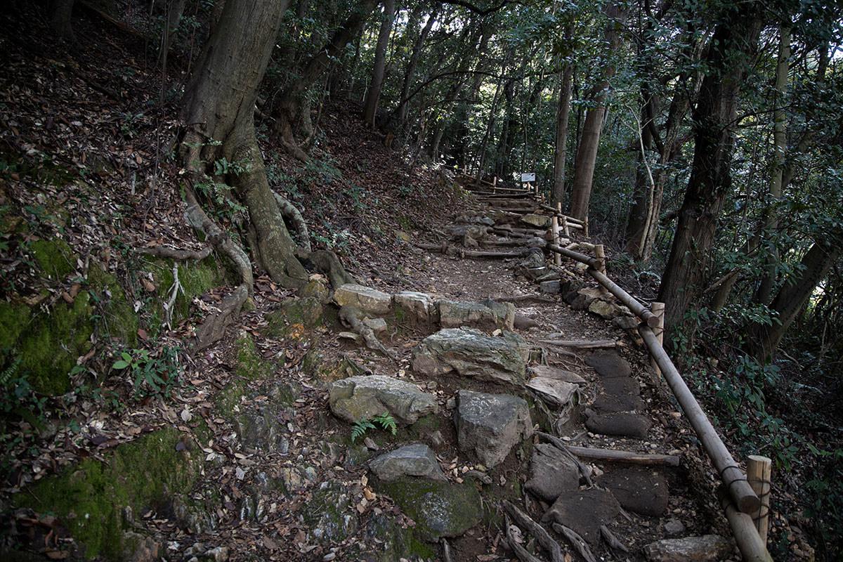 金華山-ゴツゴツした登山道を歩く
