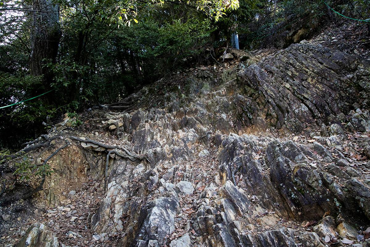 金華山-石は続く