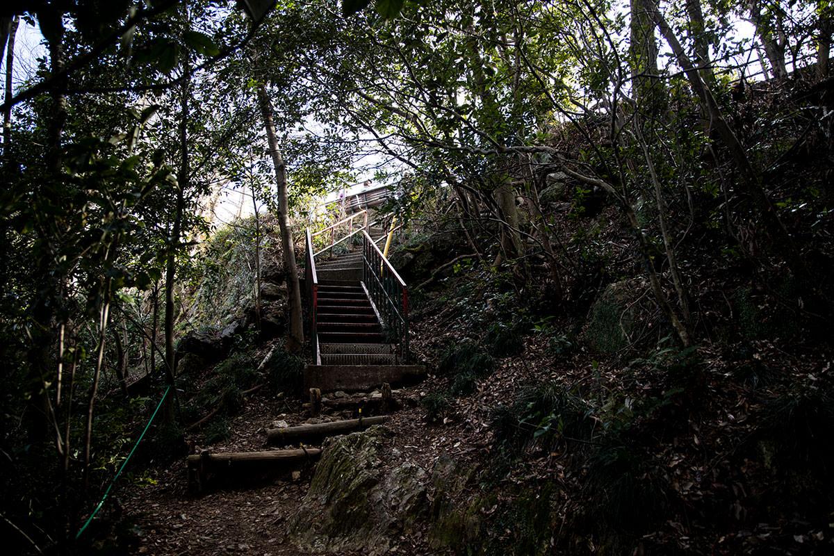金華山-あの階段を登ったら山頂