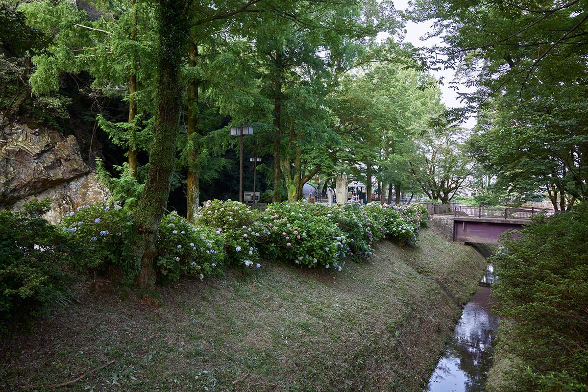 金華山-公園を歩いて登山口へ行く