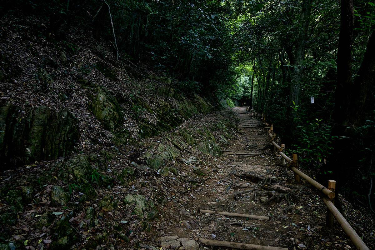 金華山-歩きやすい