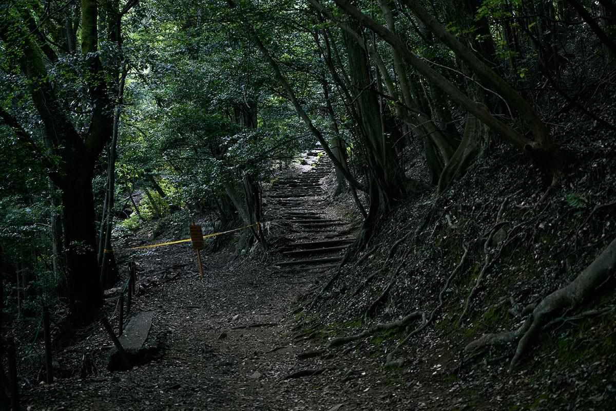 金華山-ここを登ったら階段