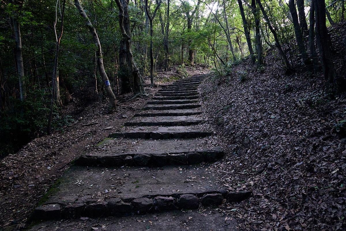 金華山-階段が続く