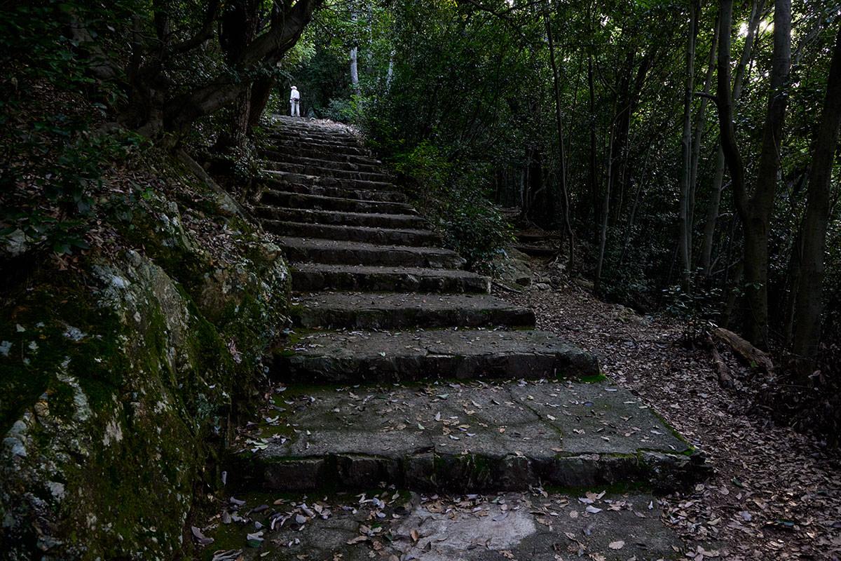 金華山-巻き道的に階段とは別の道もある