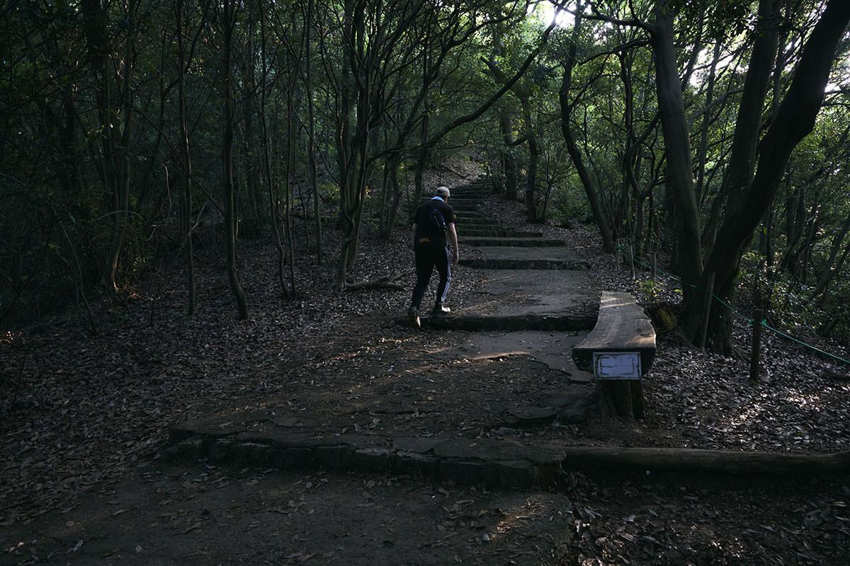 金華山-ときどきベンチがある